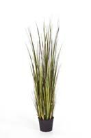 BAMBOO GRASS X 9 - Länge: 120 cm, Blätter: 534, Blüten: 9