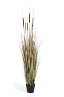 AUTUMN CATTAIL GRASS, Blätter: 396, Blüten: 5