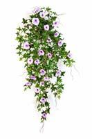 MORNING GLORY HANGING BUSH - Länge: 95cm, Blätter: 346, Blüten: 31