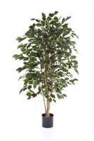 FICUS EXOTICA - Länge: 120cm, Blätter: 495
