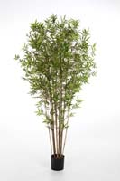 JAPANESE ORIENTAL BAMBOO - Länge: 90cm, Blätter: 1005