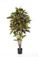 CROTON TREE - Länge: 120cm, Blätter: 209