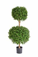 BUXUS DOUBLE BALL TREE - Länge: 125cm, Blätter: 13824