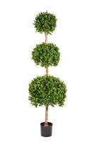 BUXUS TRIPLE BALL TREE - Länge: 160cm, Blätter: 16896