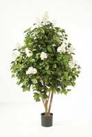 LILAC BUSH TREE - Länge: 145cm, Blätter: 1090, Blüten: 3122