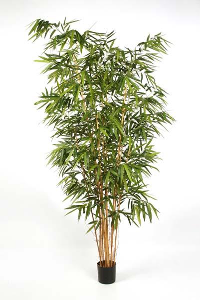 Bambus textilpflanzen k nstliche pflanzen kunstpflanzen - Bambus pflege zimmerpflanze ...