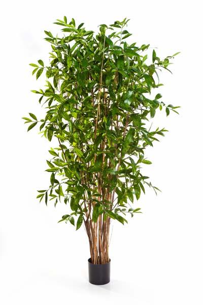 k nstliche pflanzen orchidee wettingen gmbh wo k nstliche pflanzen kaufen. Black Bedroom Furniture Sets. Home Design Ideas