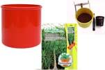 """Plants4Kids """"Mein Pflanzentöpfchen"""" Topf rot Komplettset mit Beaucarnea Flaschenb. Nr. 50403"""