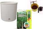 """Plants4Kids """"Mein Pflanzentöpfchen"""" Topf weiß Komplettset mit Beaucarnea Flaschenb. Nr. 50403"""