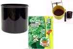 """Plants4Kids """"Mein Pflanzentöpfchen"""" Topf schwarz Komplettset mit Zimmerlinde Nr. 50437"""