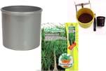 """Plants4Kids """"Mein Pflanzentöpfchen"""" Topf silber Komplettset mit Beaucarnea Flaschenb. Nr. 50403"""