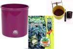 """Plants4Kids """"Mein Pflanzentöpfchen"""" Topf violett Komplettset mit Eukalyptusbaum Nr. 50415"""