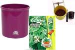 """Plants4Kids """"Mein Pflanzentöpfchen"""" Topf violett Komplettset mit Zimmerlinde Nr. 50437"""