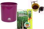 """Plants4Kids """"Mein Pflanzentöpfchen"""" Topf violett Komplettset mit Beaucarnea Flaschenb. Nr. 50403"""