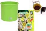"""Plants4Kids """"Mein Pflanzentöpfchen"""" Topf apfelgrün Komplettset mit Baumwolle Nr. 50417"""