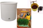 """Plants4Kids """"Mein Tiergrastöpfchen"""" Topf weiß Komplettset mit Vogelgras Nr. 24351913"""