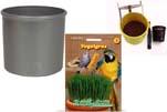 """Plants4Kids """"Mein Tiergrastöpfchen"""" Topf dunkelsilber Komplettset mit Vogelgras Nr. 24351913"""