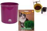"Plants4Kids ""Mein Tiergrastöpfchen"" Topf violett Komplettset mit Katzengras Nr. 24351813"