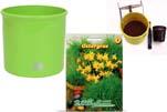 """Plants4Kids """"Mein Tiergrastöpfchen"""" Topf apfelgrün Komplettset mit Ostergras Nr. 24351713"""