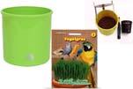 """Plants4Kids """"Mein Tiergrastöpfchen"""" Topf apfelgrün Komplettset mit Vogelgras Nr. 24351913"""