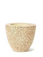 Plants First Choice - Natural Trendy Wood rond ø61/H:52